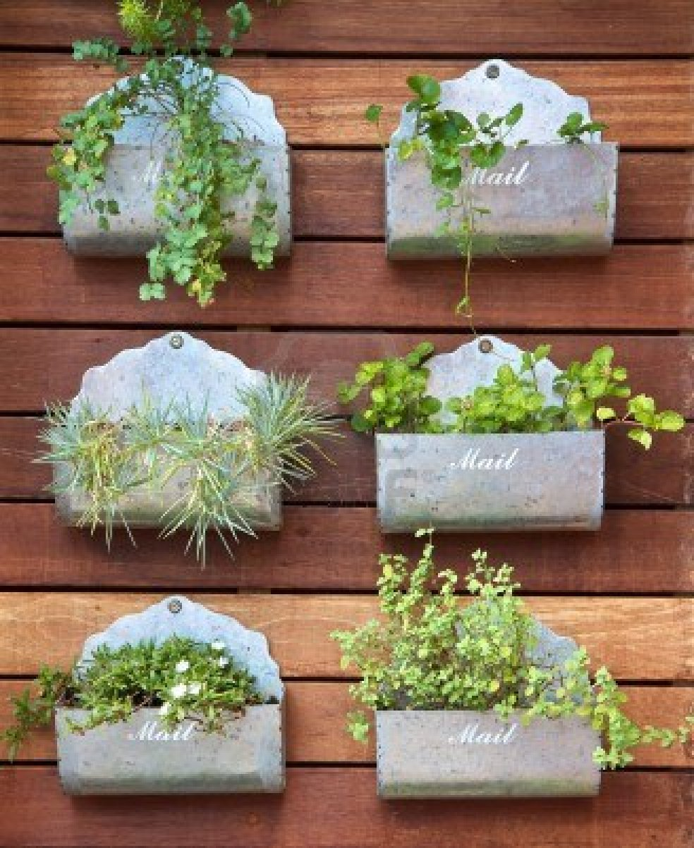 13544172-vertical-gardening-concept-plants-in-a-mail-box