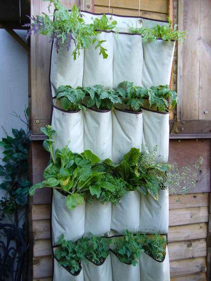 shoe-bag-garden