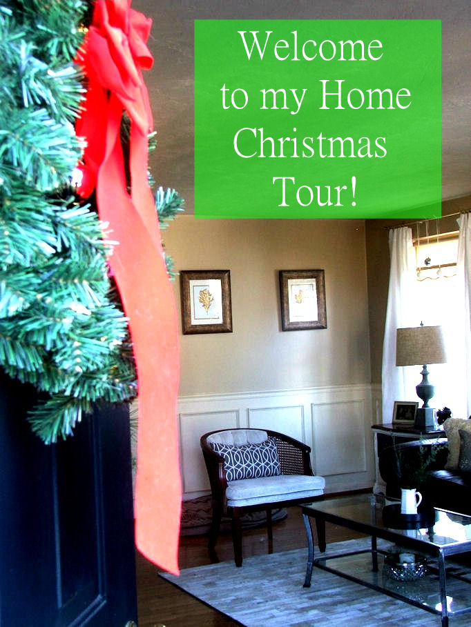 Dio Home Improvements 2013 Christmas Tour