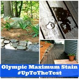 OLympic Maximum Stain #Uptothetest #Sponsored