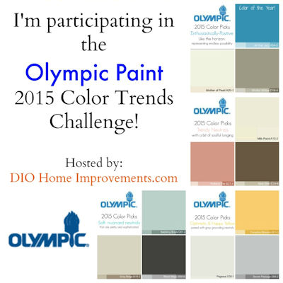 2015 Olympic Paint Color Trends Challenge