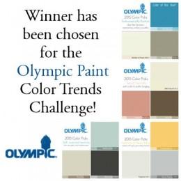 OlympicPaint2015Winner